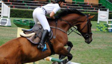 ioana cai
