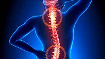 spine-center-spine