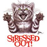 STRESS REVERSE. SMILE ON YOUR FACE