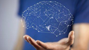 Cele 5 modele de functionare ale creierului si cum iti influenteaza acestea performanta